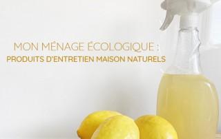 ménage écologique - produits entretien maison naturels