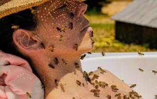 Repousser les moustiques en été