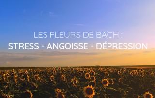 fleurs de bach stress angoisse et dépression - biofloral