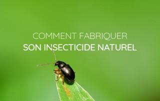 fabriquer insecticide naturel bio soi même